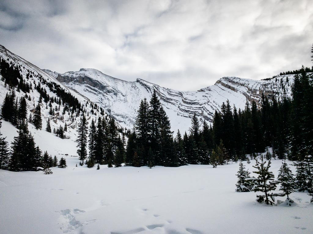The risk of a Banff avalanche increases above the treeline into the alpine zone