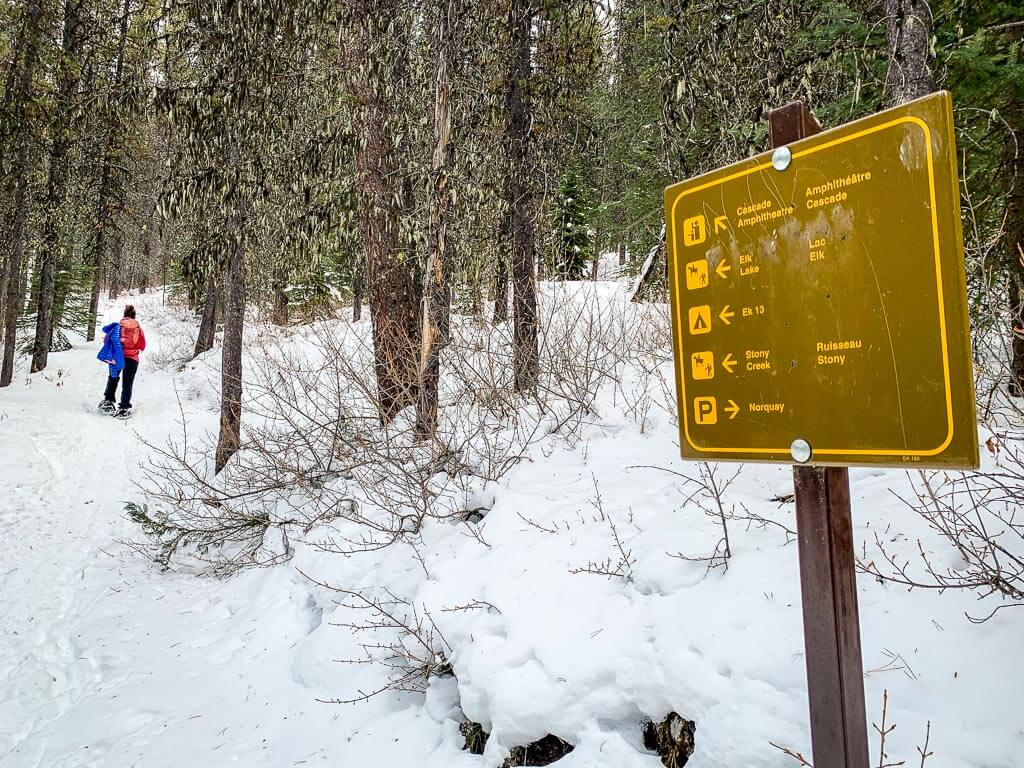 Be prepared to remove your winter jacket on the difficult Cascade Amphitheatre snowshoe trail in Banff