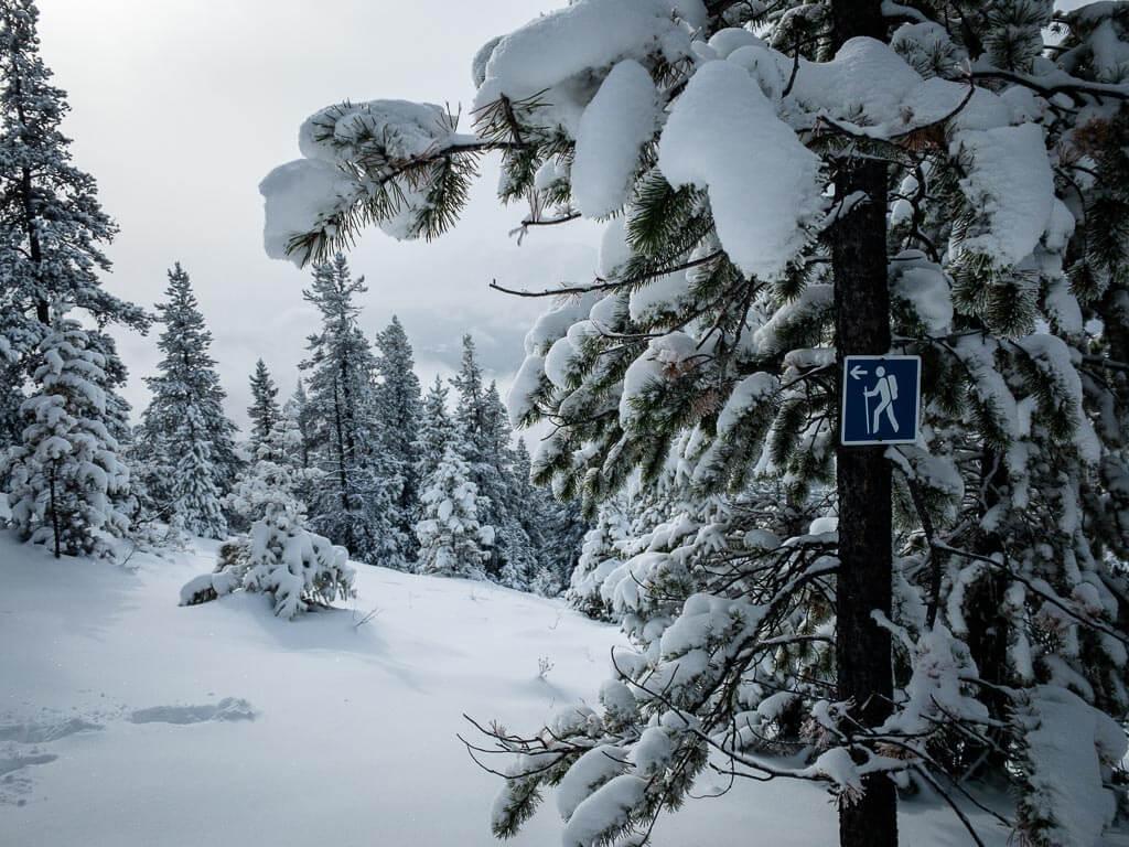 banff national park snowshoe trails - Upper Stoney Lookout