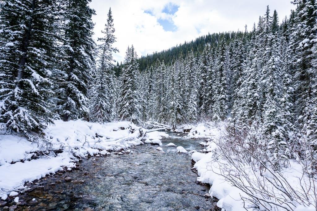 40 Mile Creek runs below Cascade Mountain, Mount Brewster and Mount Norquay