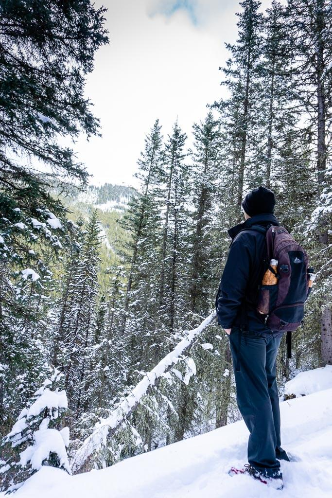 The Cascade Mountain hiking trail in winter is fun to snowshoe