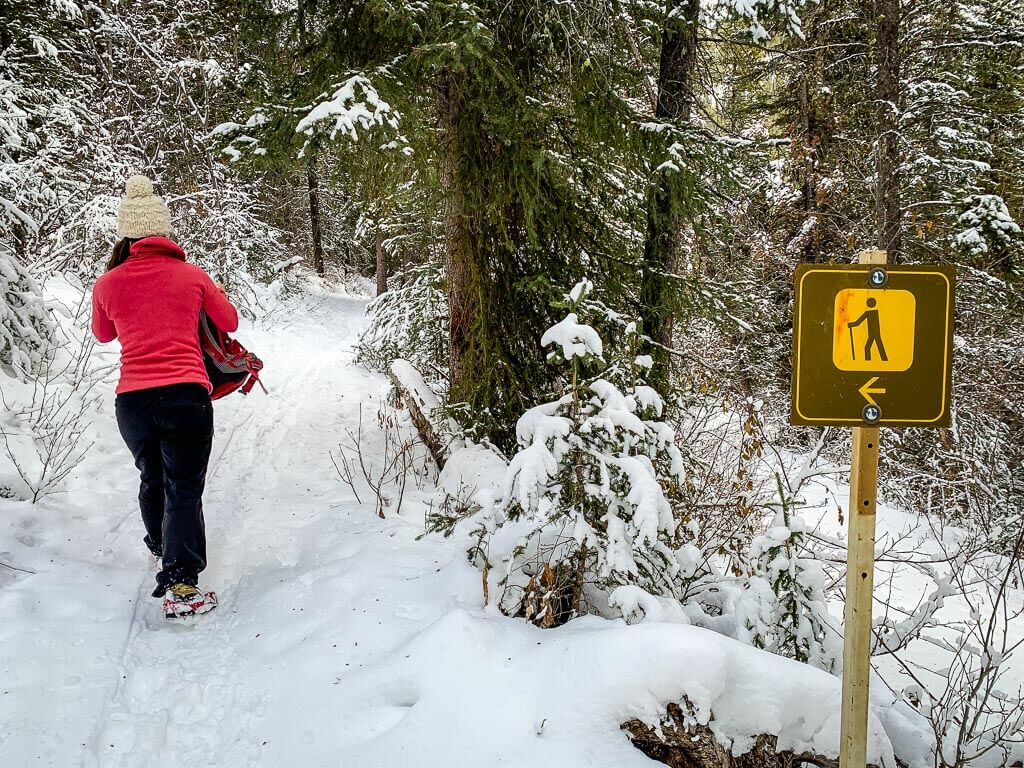 Use microspikes for winter hiking in Banff