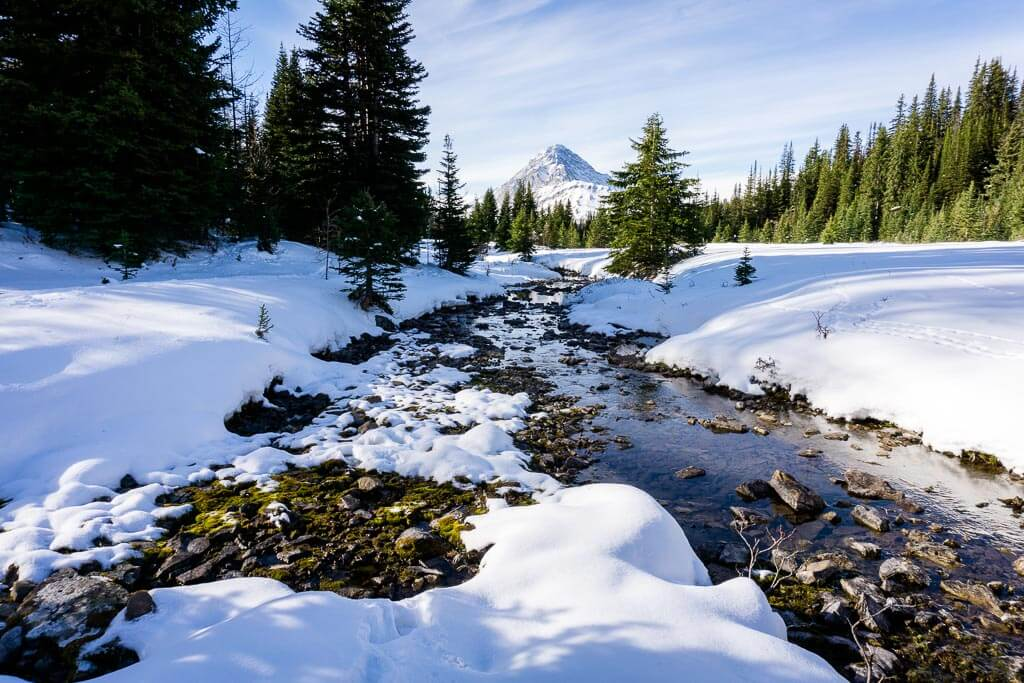 Chester Creek in winter as seen from the Chester Lake snowshoe trail in Kananaskis Country