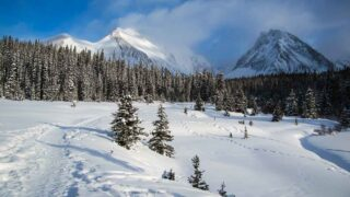 The Chester Lake Snowshoe Trail can also be enjoyed as one of the best winter hikes in Kananaskis