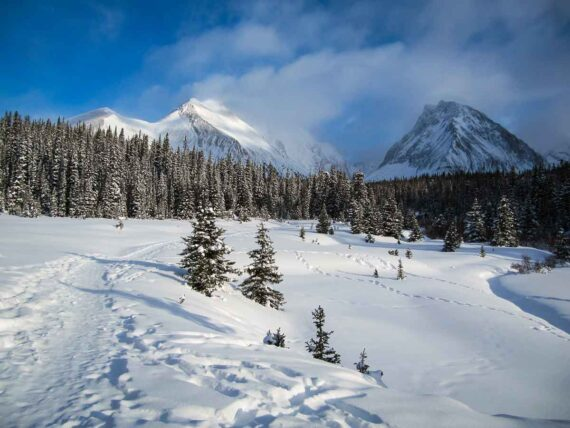 Chester Lake Snowshoe in Kananaskis Country
