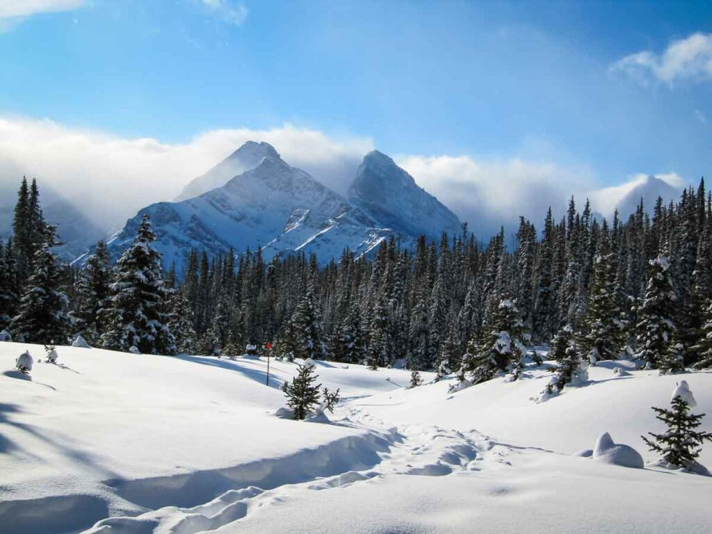 The consistently deep snow in January makes Chester Lake one of the best snowshoe trails in Kananaskis