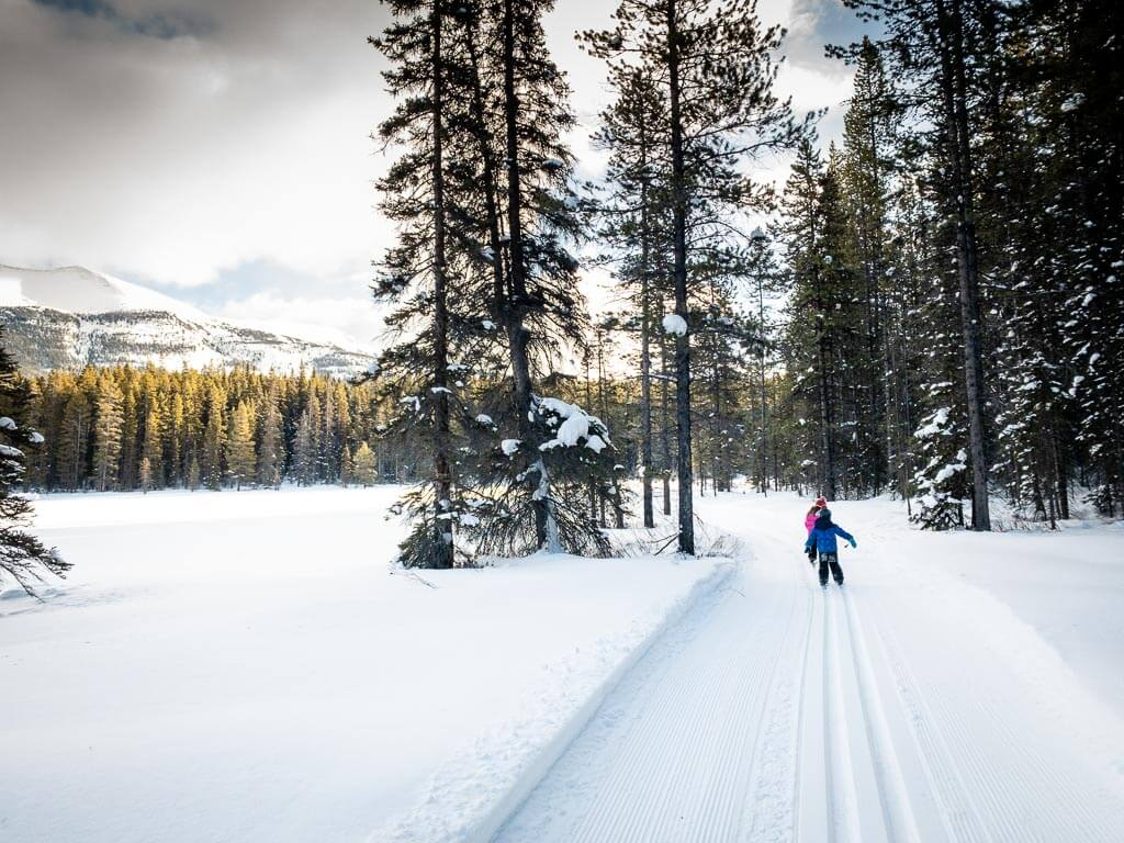 Find excellent Banff cross country skiing in January at the Pipestone Cross-Country Ski Trails near Lake Louise