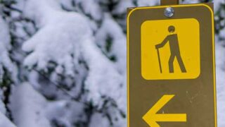 Easy Banff Winter Hikes Web Story Cover