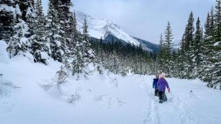 Shark Lake is a kid-friendly Kananaskis snowshoe trail
