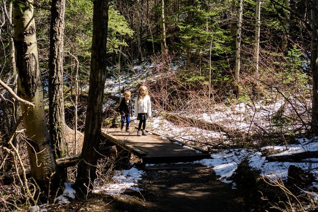 Kids love the Heart Creek hike near Banff