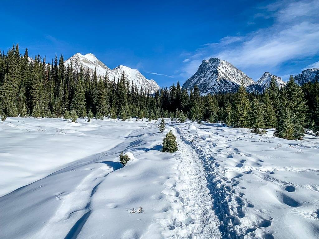 The Chester Lake snowshoe is one of our favorite things to do near Banff in winter
