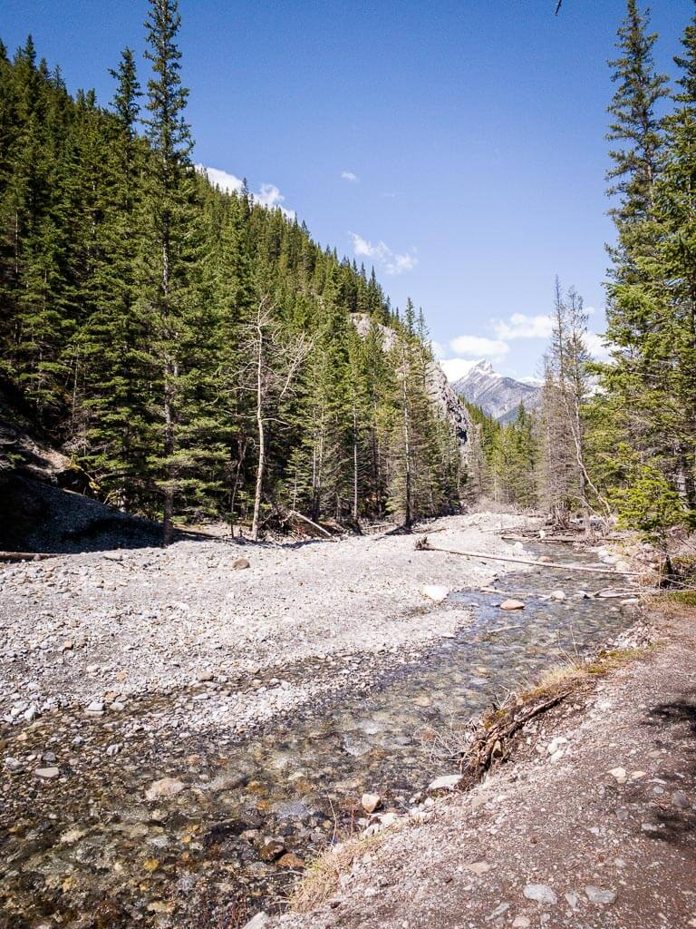 Heart Creek trail is an easy hike in Kananaskis