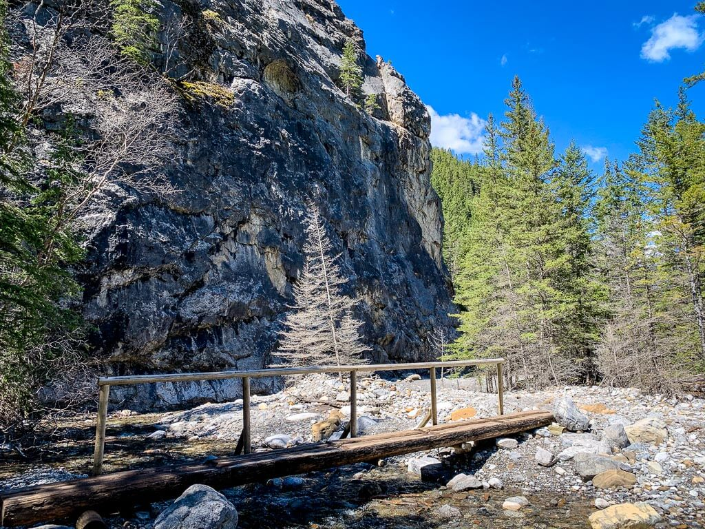 A bridge on the Heart Creek Trail near Canmore