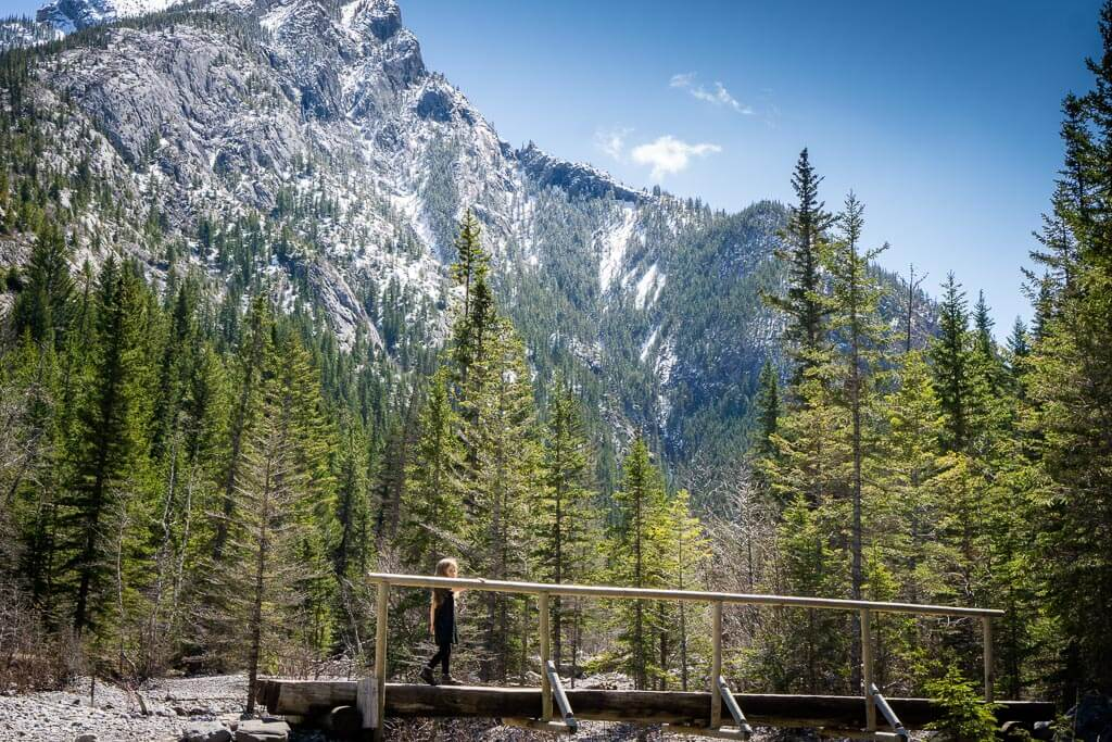 The Heart Creek Trail, an easy hike in Kananaskis, features many bridges, an evergreen forest and beautiful mountain views