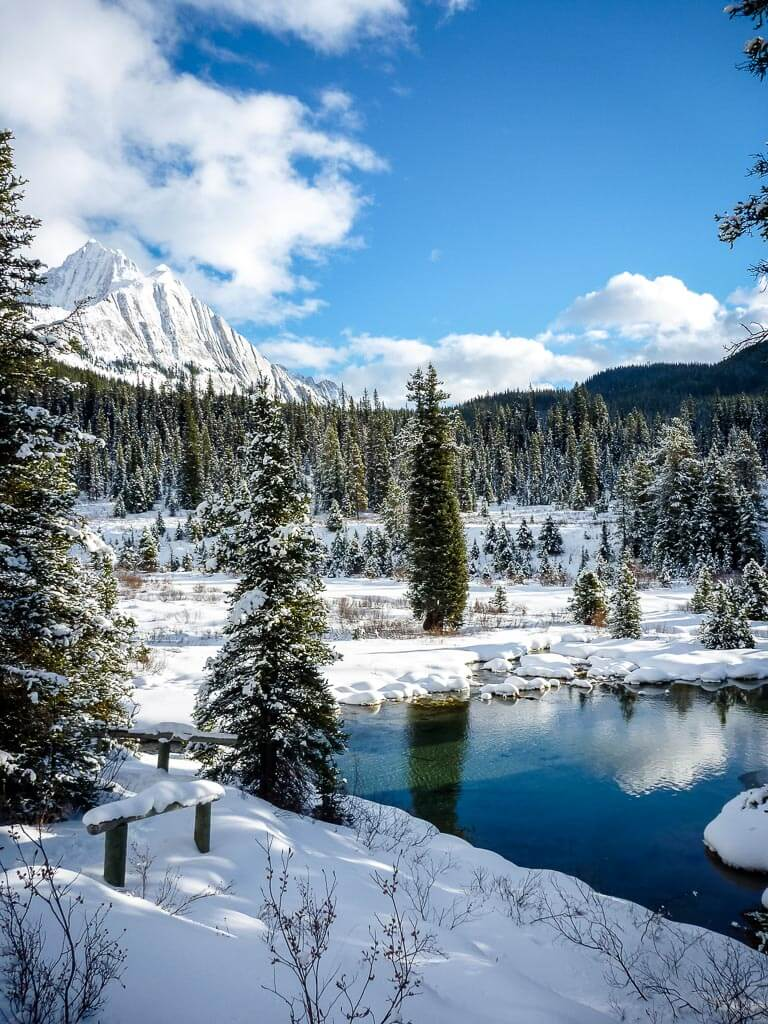 Moose Meadows to Ink Pots - best snowshoeing banff