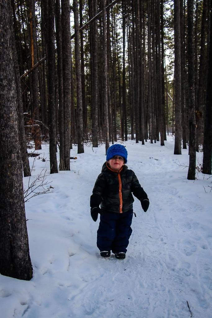 Johnson Lake - easy snowshoe trails in Banff