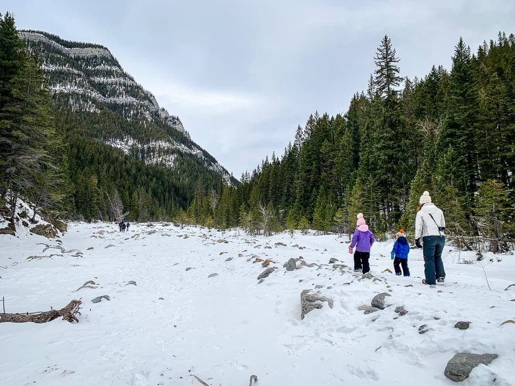 Kananaskis hikes for kids - Jura Creek winter hike near Exshaw, AB