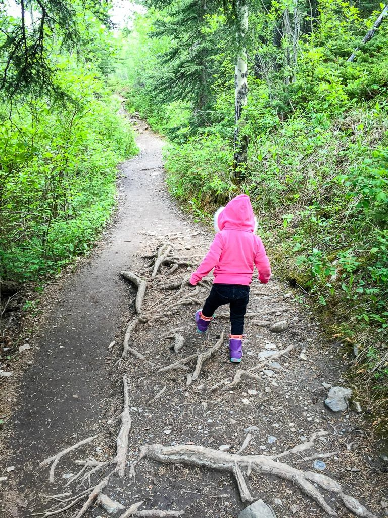The Heart Creek Hike is one of the best things to do in Kananaskis with kids