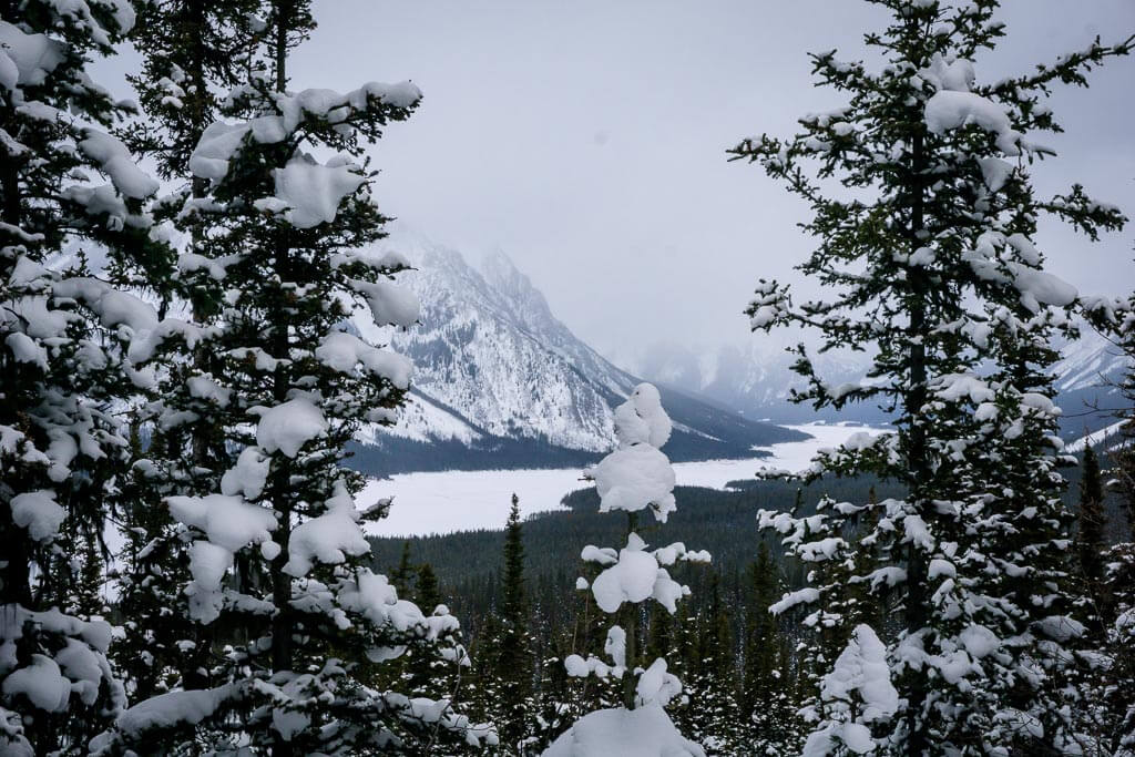 You'll enjoy views of the Spray Lakes in Kananaskis from the Shark Lake snowshoe trail