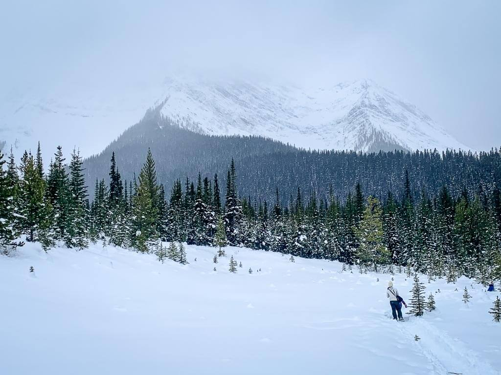 Breaks in the trees along the Kananaskis Shark Lake snowshoe trail provide great mountain views, even on a cloudy January day
