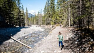 The Heart Creek Trail is one of the best easy hikes near Canmore