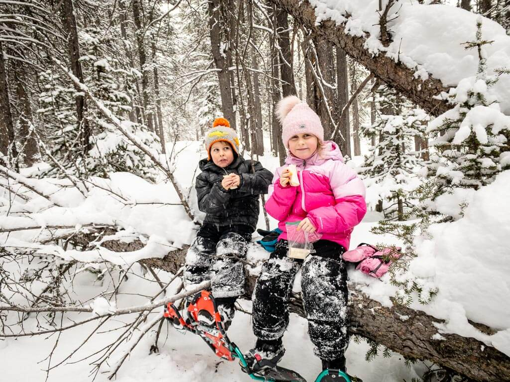 Kids eat lunch on the Torpor Loop Trail - one of the newest Kananaskis snowshoe trails