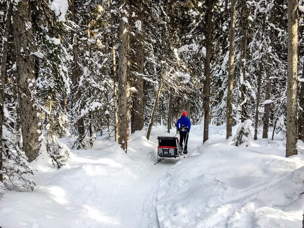 Fairview Lookout snowshoeing at Lake Louise