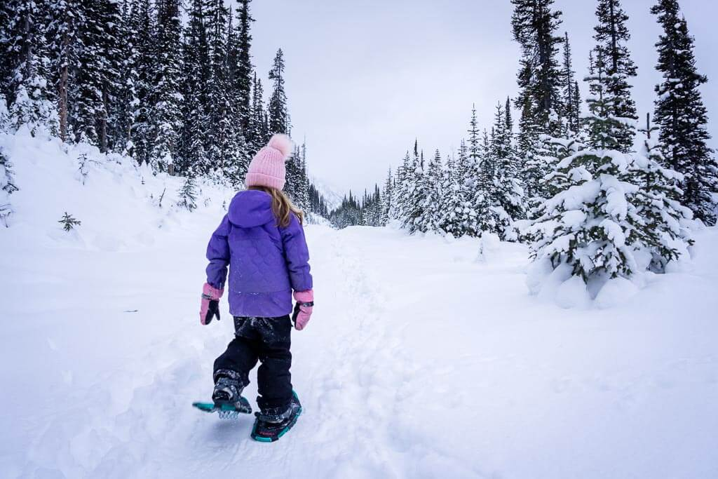 The Shark Lake snowshoe trail is a very flat & easy snowshoe trail in Kananaskis