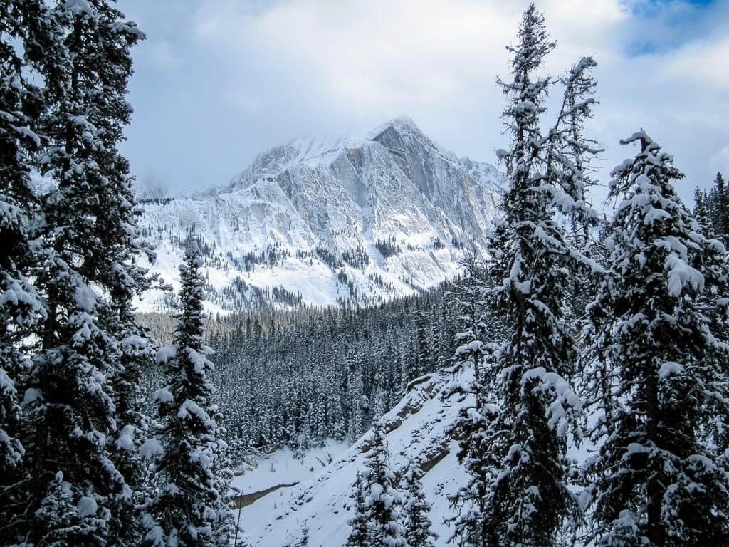 Views along Moose Meadows - snowshoeing in banff