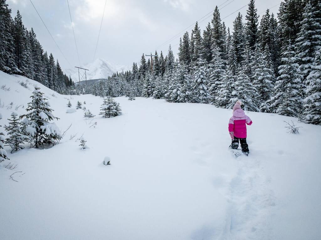 The Torpor Loop is a new Lower Kananaskis Lake snowshoe trail