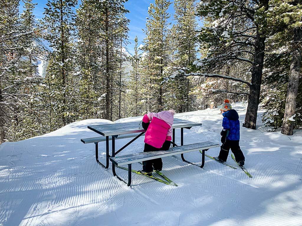 picnic table along Wheeler Cross Country Ski Trail in Kananaskis