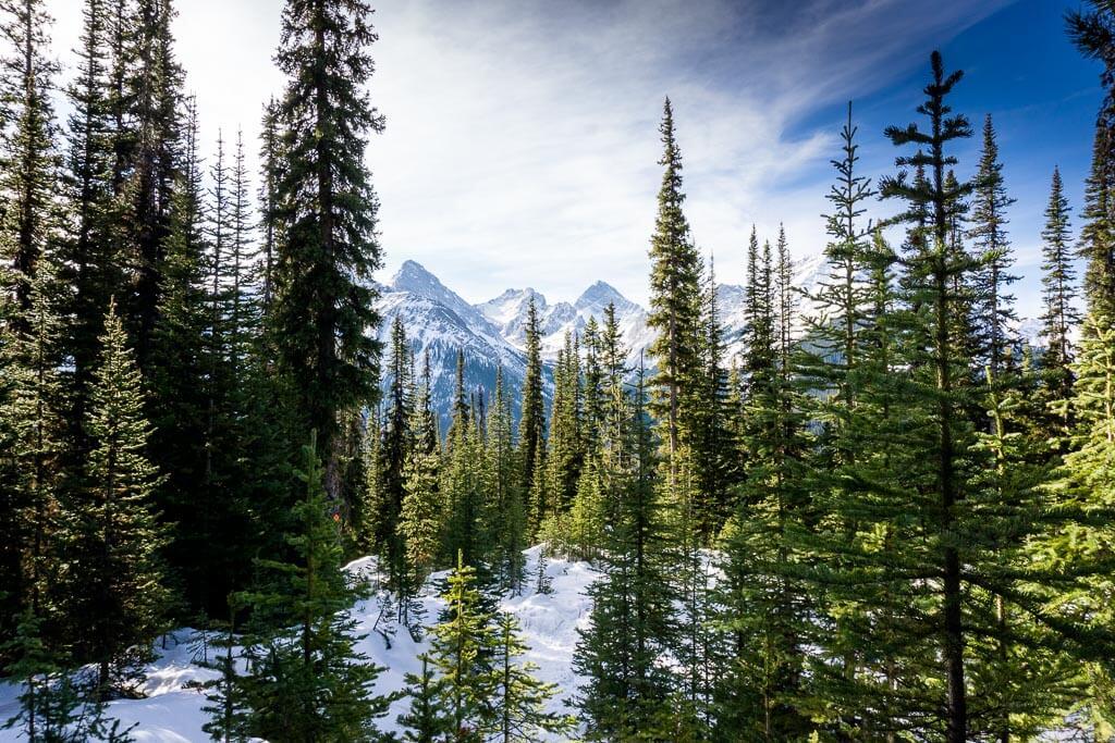 chester lake hike winter