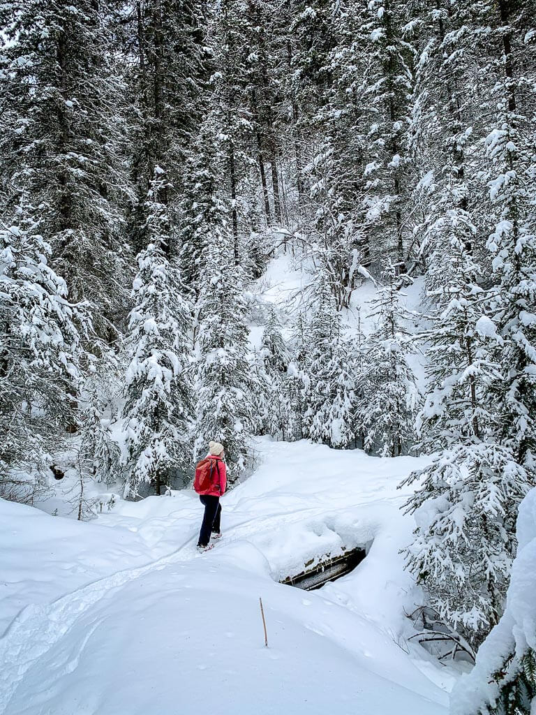 Banff snowshoe trails are so beautiful in winter