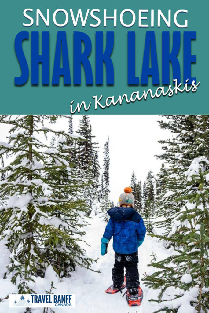Don't miss the Shark Lake snowshoe trail. This is an easy snowshoe trail in Kananaskis with some incredible mountain scenery.