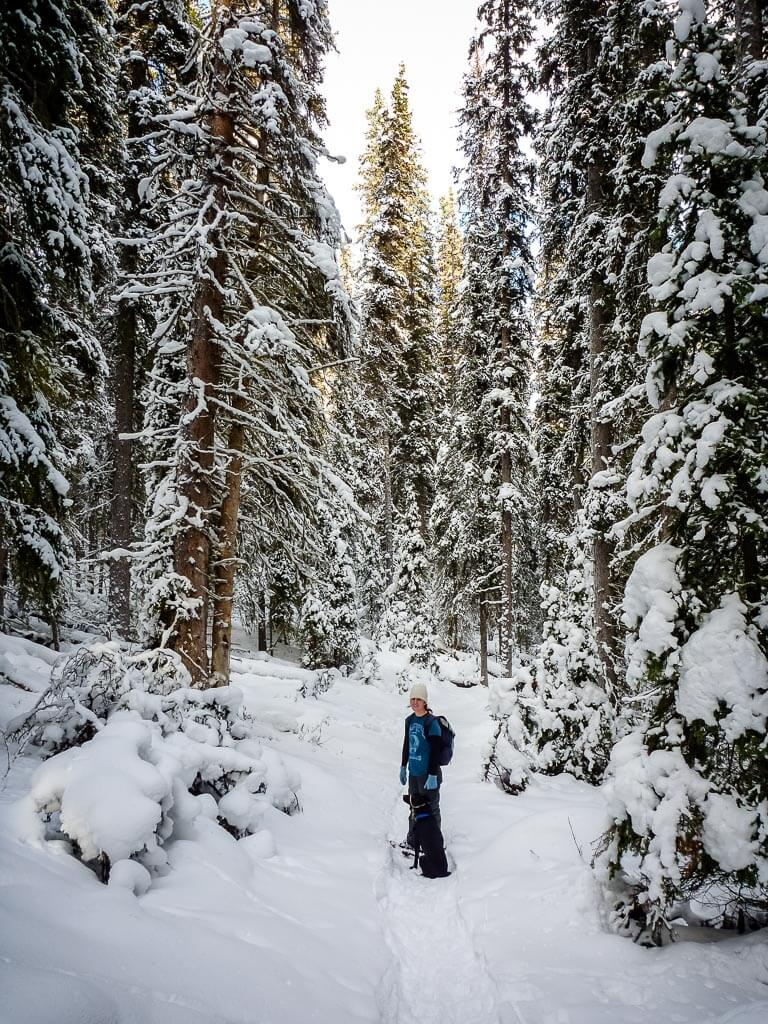 snowshoeing banff national park on Moose Meadows to Ink Pots