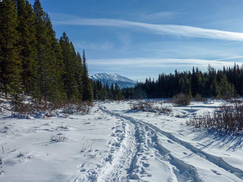 Snowshoeing is one of the most fun things to do in Banff in January