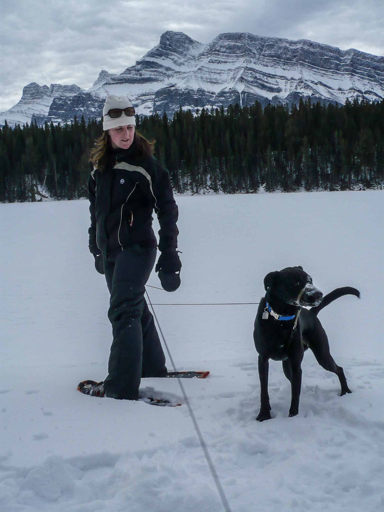 The Johnson Lake snowshoe trail is one of our favorite things to do in Banff in winter