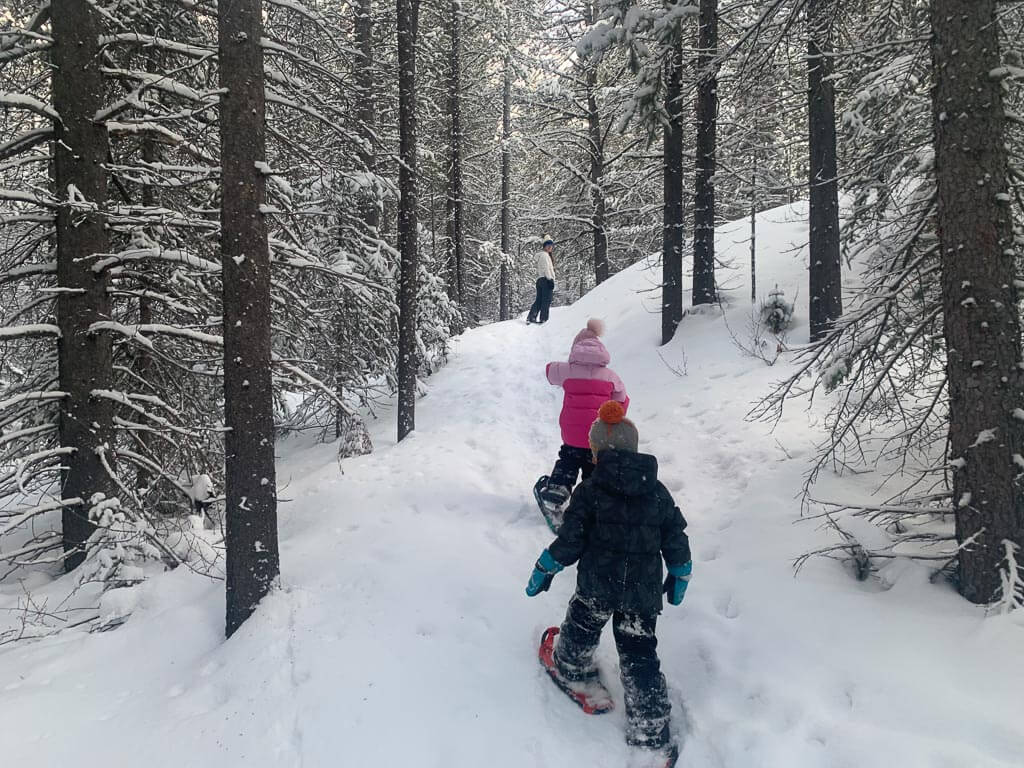 Snowshoes are an effective traction device on Kananaskis winter trails