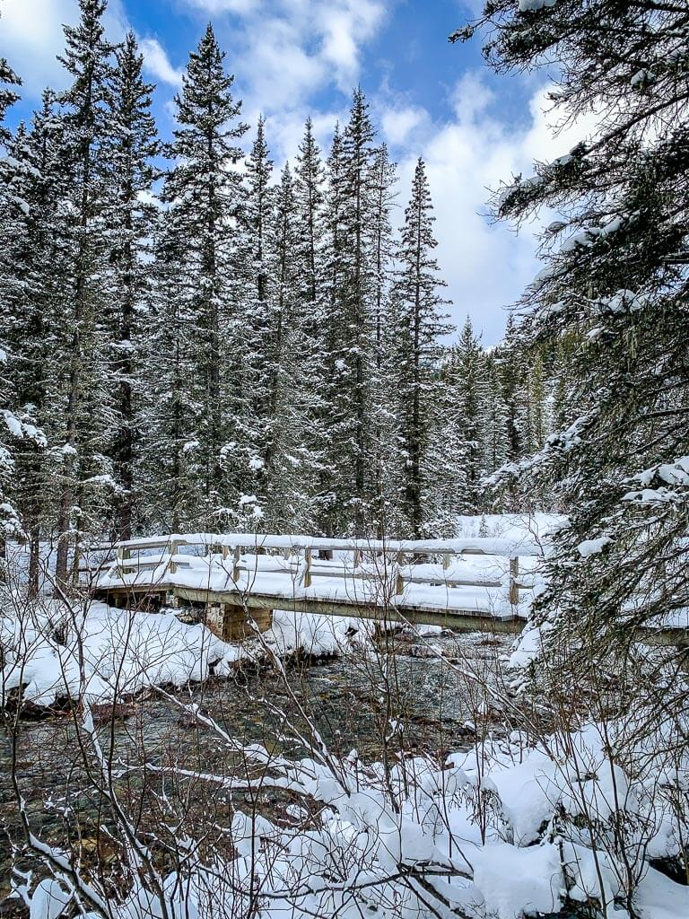 A snow-covered bridge over 40 Mile Creek - snowshoe trails in Banff, Canada