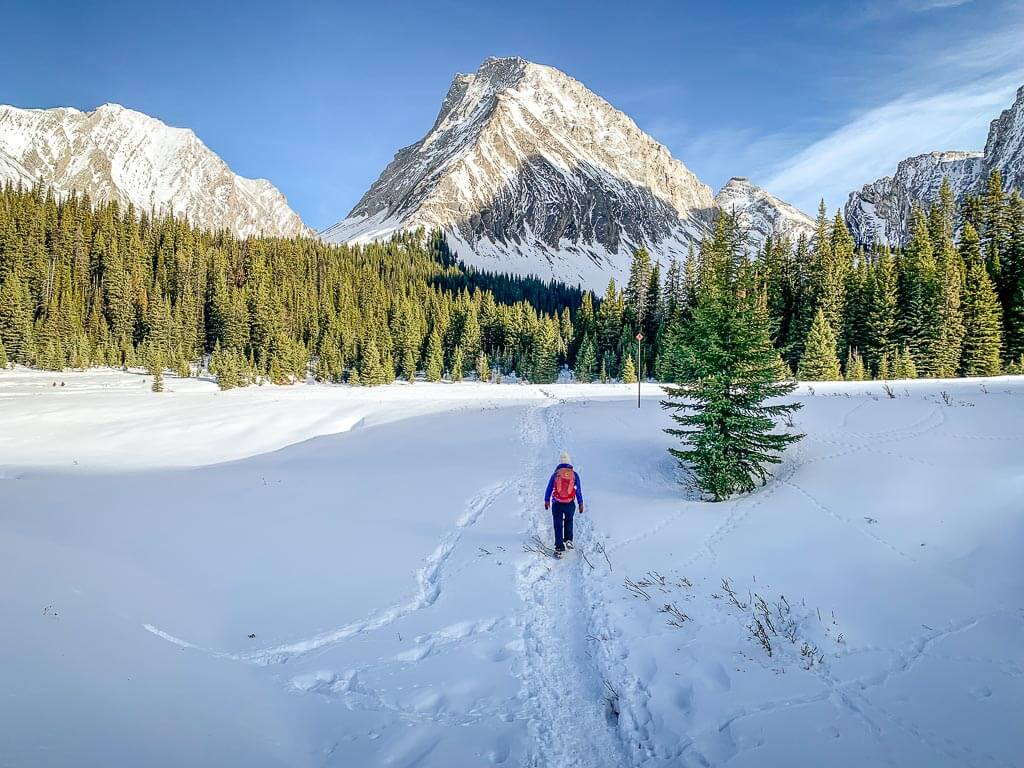 The upper meadow on the Chester Lake snowshoe trail provides some of the best scenery in Kananaskis, Alberta