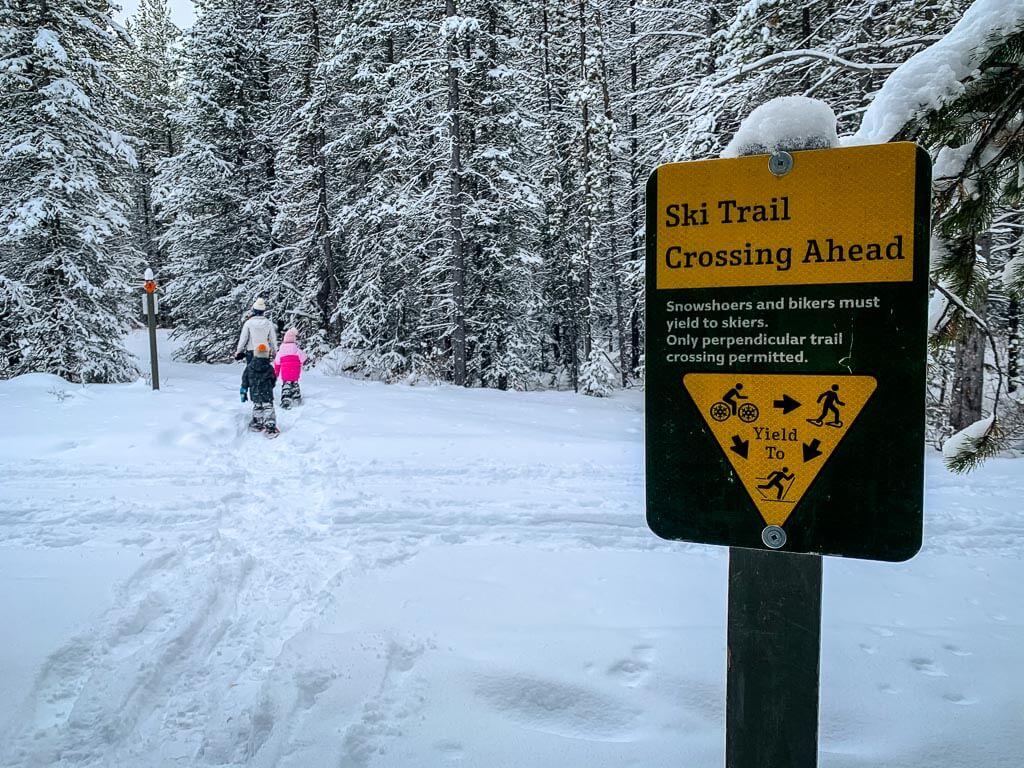 Kananaskis snowshoeing etiquette - do not step on cross-country ski tracks
