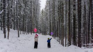 Visiting Kananaskis and Banff in January