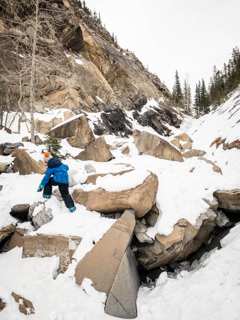 Winter activities for kids near Calgary - Jura Creek winter hike