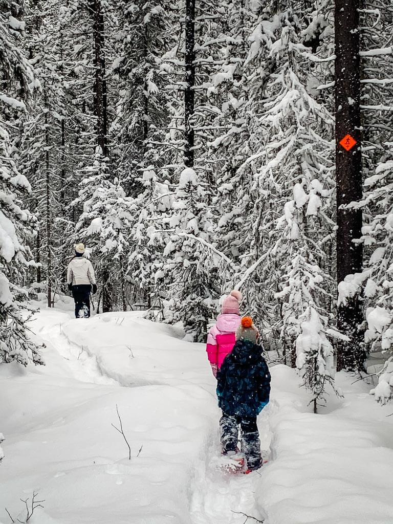 Kids enjoy easy snowshoe trails in Kananaskis