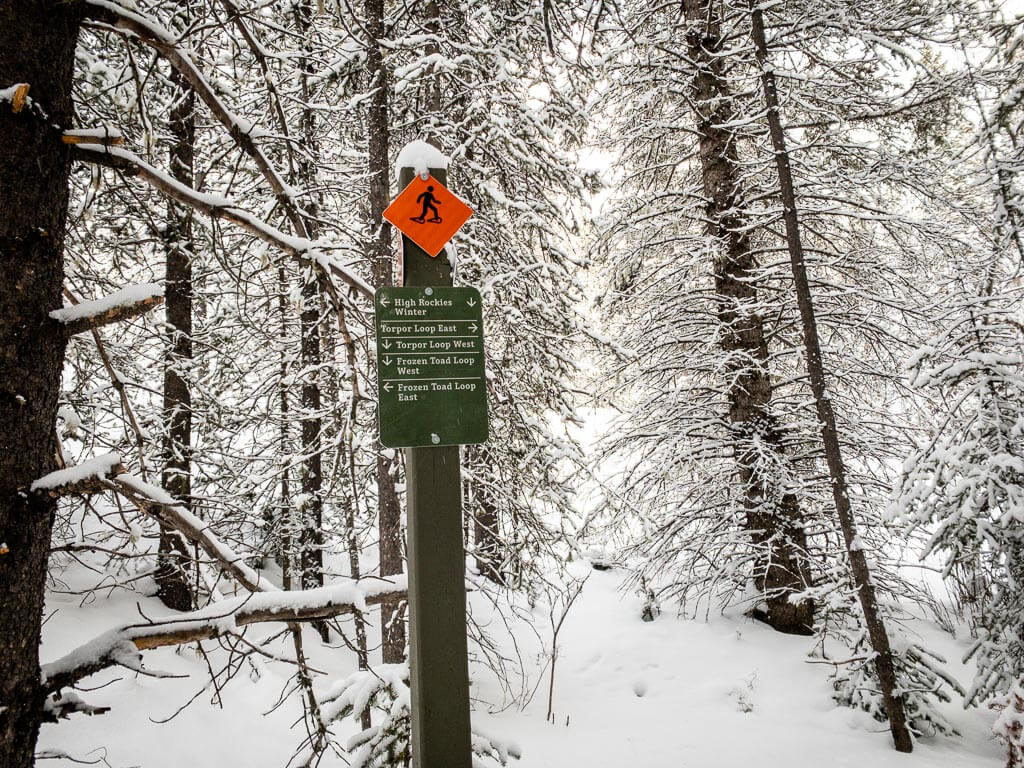 Kananaskis trail sign for High Rockies Winter trail, Frozen Toad Snowshoe Trail, Torpor Loop West and East
