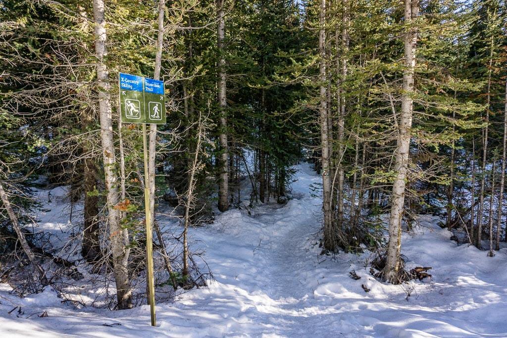 The trail sign where the Chester Lake snowshoe trail splits from the Chester Lake cross-country ski trail