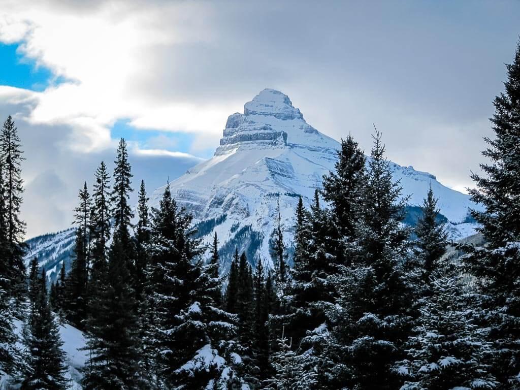 View alog Moose Meadows Banff snowshoe