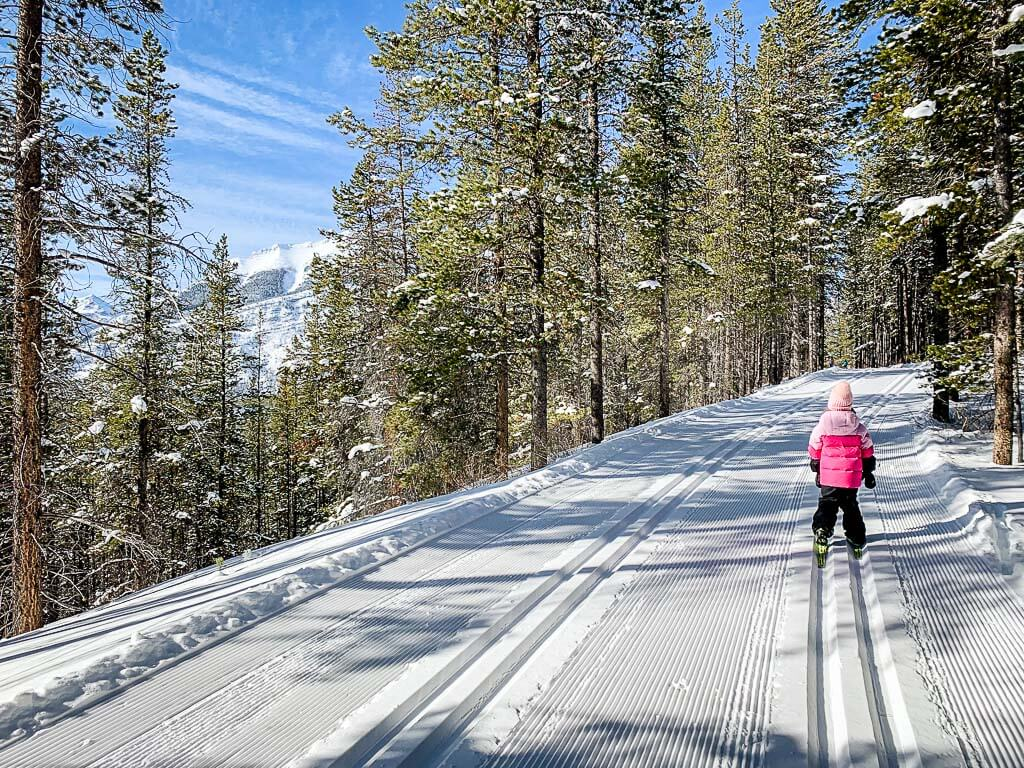 Views along Wheeler XC Ski Trail in Peter Lougheed Provincial Park