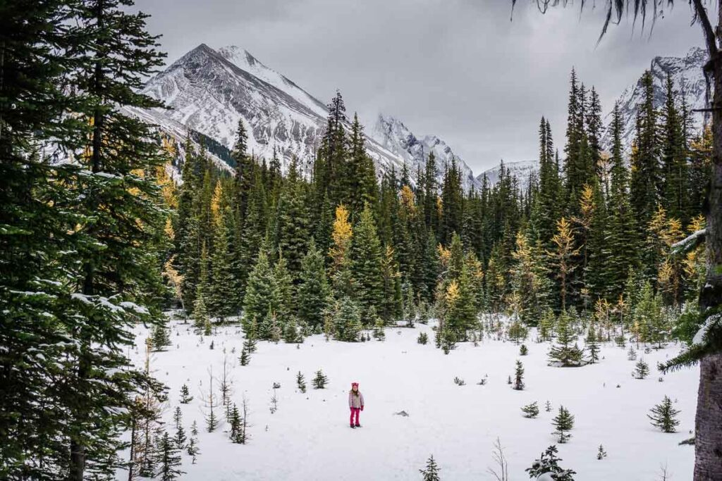 Things to do in Kananaskis with kids in winter - Chester Lake winter hike