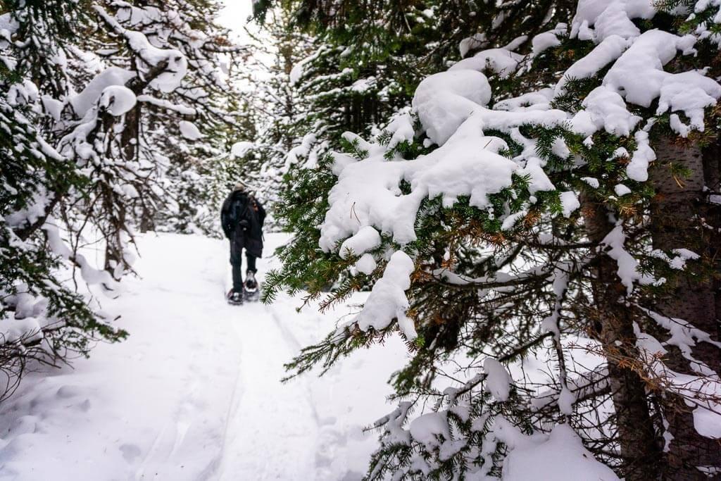 Banff has some difficult snowshoe trails like Cascade Amphitheatre
